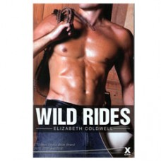 Wild Rides Erotic Story Book